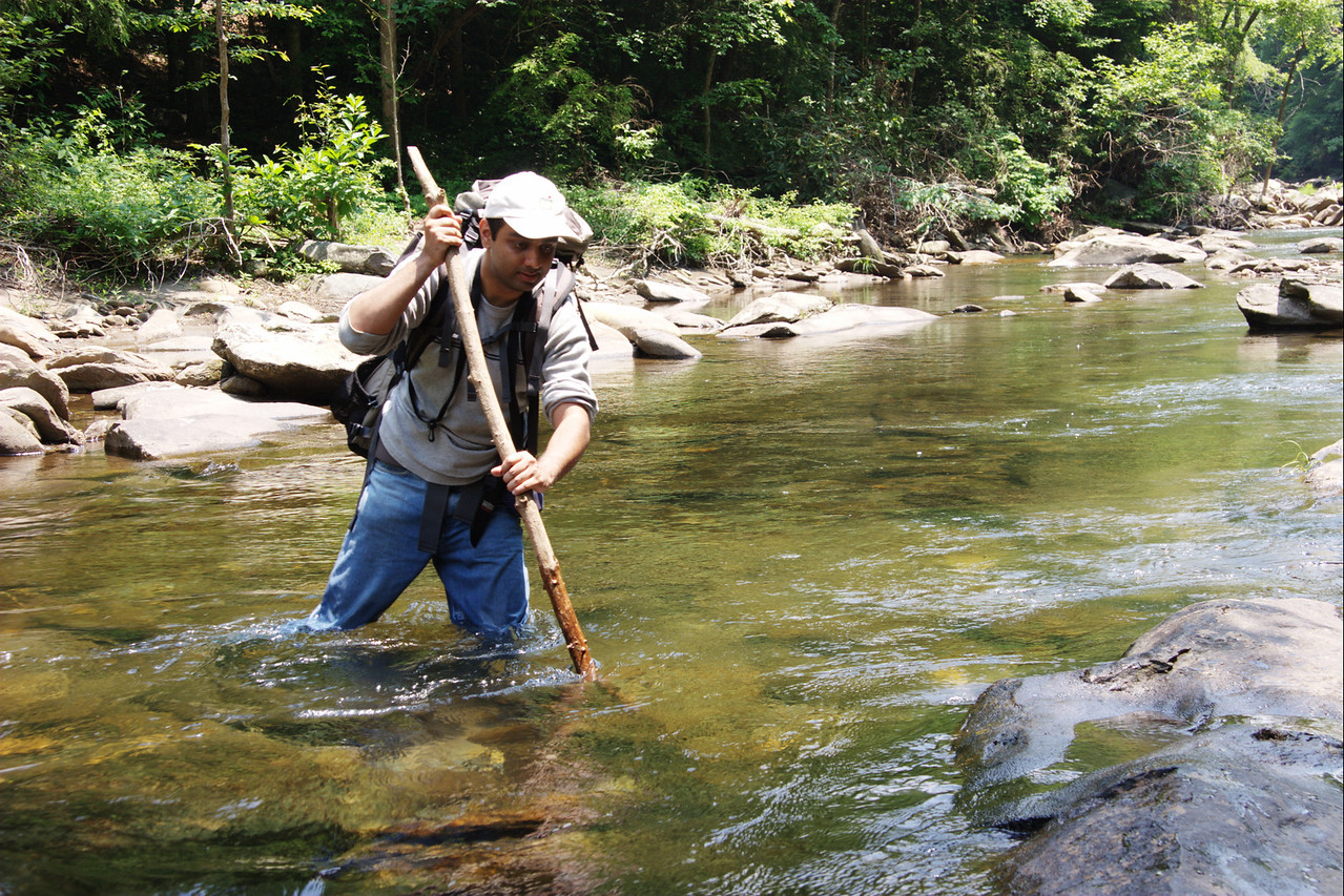 I don't have a photo of it but, during one of the river crossings, I came across a snake in the water, just a few feet upstream from me. It had its forked tongue  out. I was lost in the moment of observing the snake at close quarters and didn't think of taking a photo at that time. With the stick in my hands, awe, rather than fear was the feeling I had as I watched the snake and it watched me. Yes, I did have snake-bite kit including antidote for venom in my backpack.