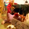 Rachel & Pets