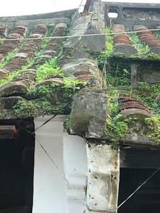 Hoy Ann, Vietnam