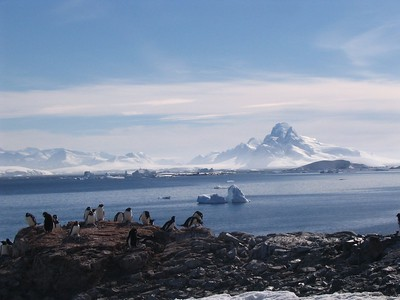 Epitome of Antarctica - Andrew Gossen