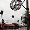 Scottsdale Signpost