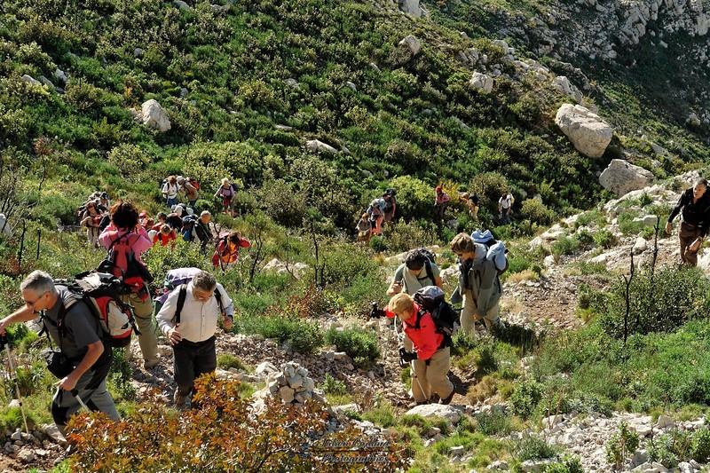 Aureille - Dans les vallons des Alpilles - Montée aux Opies