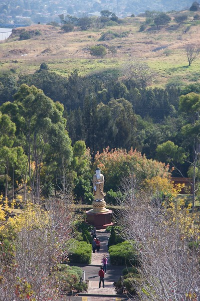 Nan Tien Temple • The Illawarra region, the region south of Sydney where the Nan Tien Temple is situated, hasn't suffered such terrible drought as the rest of the state, hence the luscious vegetation in the temple grounds.