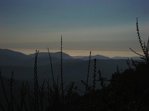 Looking out at the Santa Cruz Mountains