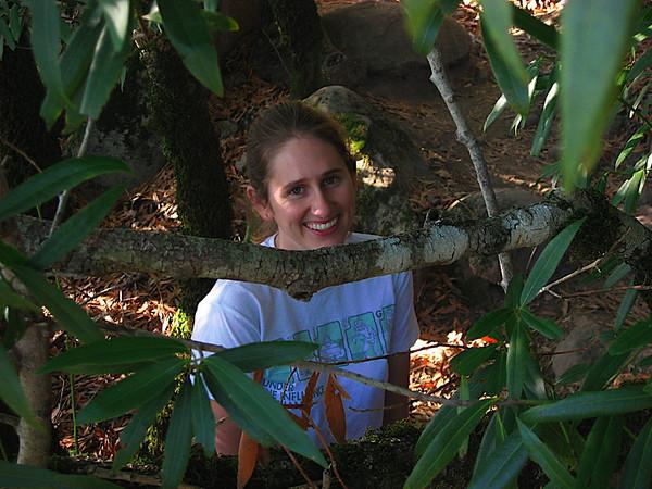 Hiding in the jungle!