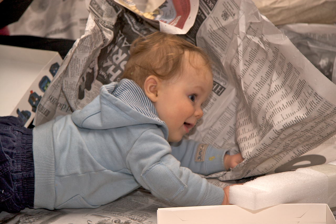 Newspaper • Edmund liked nothing better than rolling in the sheets of newspaper in which I'd wrapped my Christmas presents.