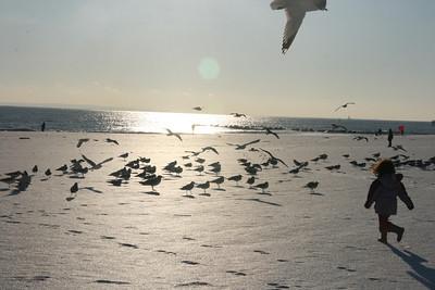 Coney Snowy Island