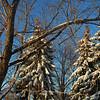 Dec 06 snowstorm 1