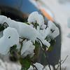 Dec 06 snowstorm 6