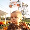 Little pumpkin 004