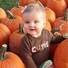 Little pumpkin 002