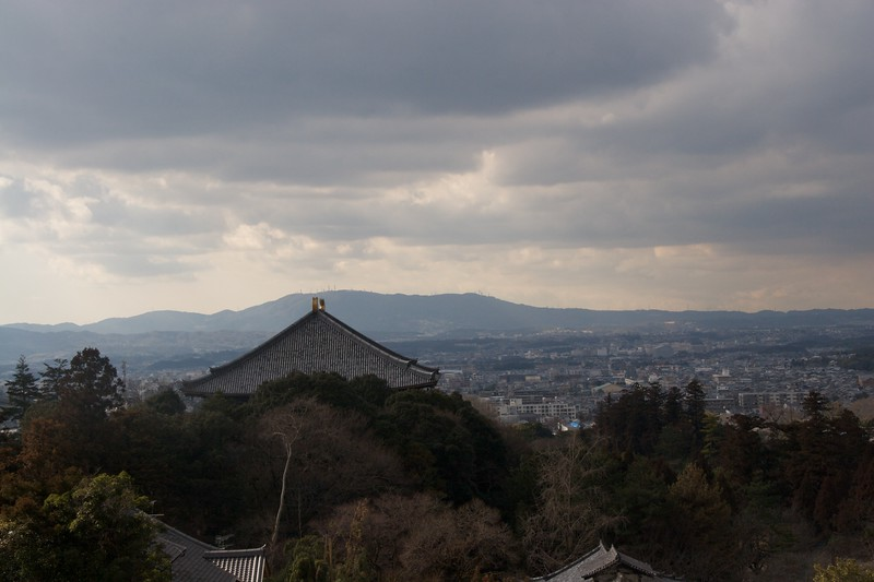 View over Nara from Shoso-in