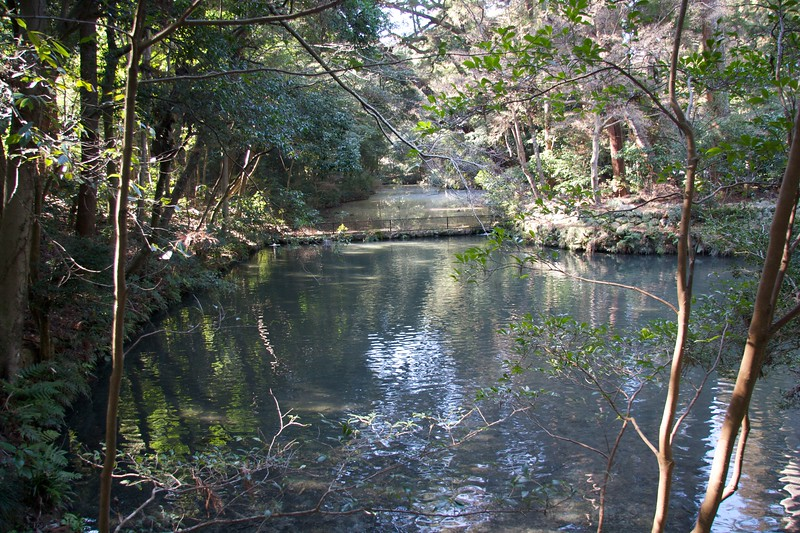 Pond at the Geku