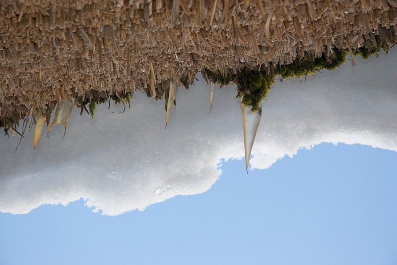Icicles on the thatch • Icicles were forming under the thick snow sitting on the houses' roofs at Hida Folk Village.