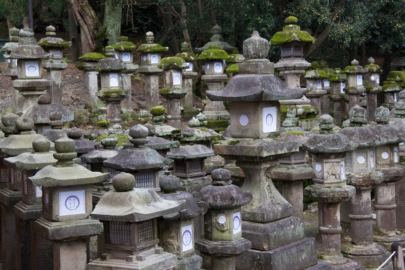 Stone lantern army • An array of stone lanterns outside Kasuga Taisha. There were thousands of them.