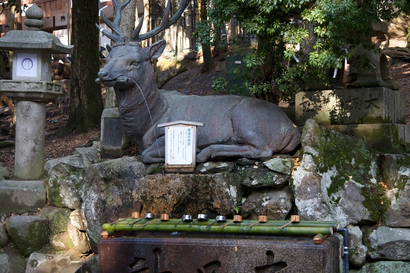 Deer fountain • This fountain was outside the formal 'deer park' along the path from Kasuga Taisha to the botanical garden at Nara. I didn't go in, because with my background I would be very unlikely to get in to anywhere that has a deer park. (That's a very weak, and highly specific, joke. In fact, it's barely a joke at all. But I'll leave it there.)