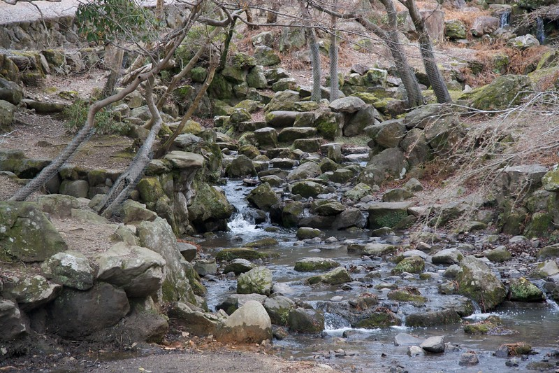 Stream at Todai-ji