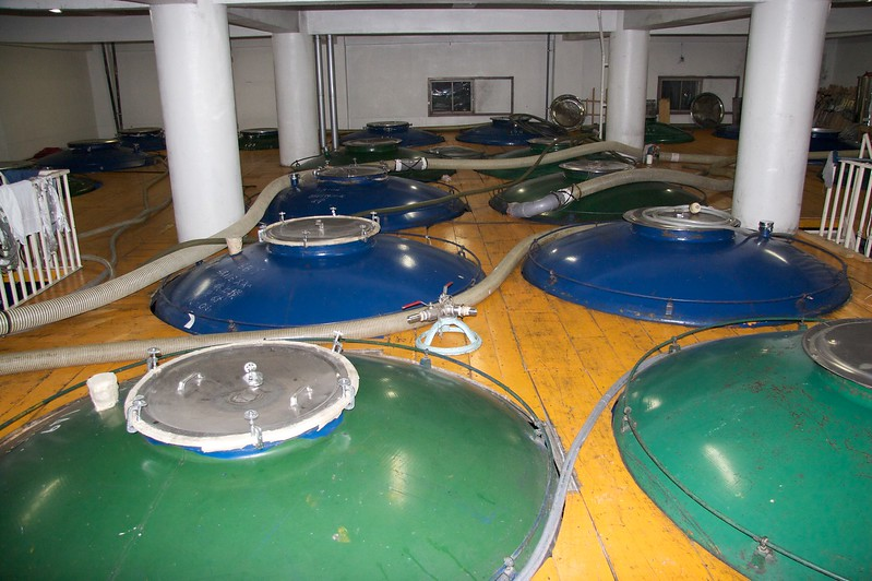 Fermenting the sake • These tanks contained rice fermenting to form sake; you can see inside one in the next photo.