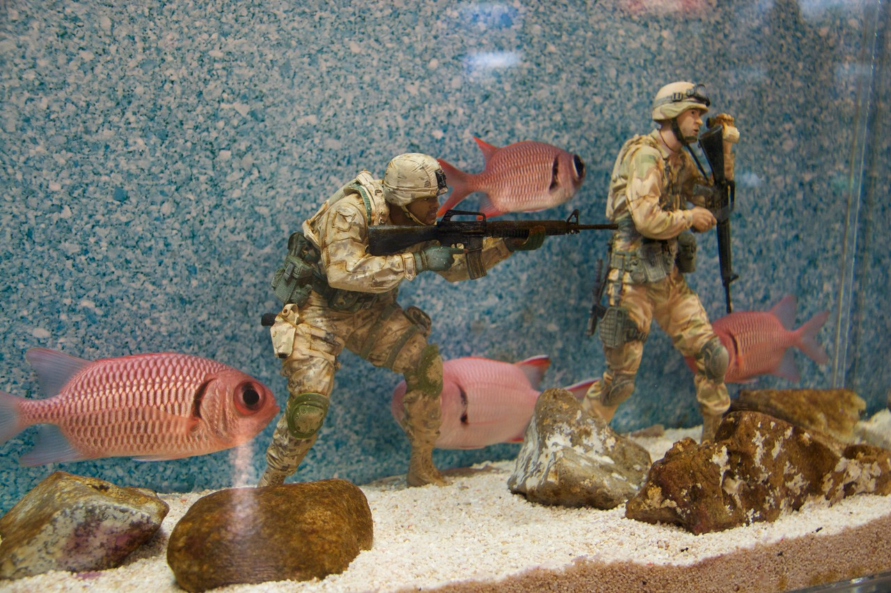 Attack of the enormous fish • A bizarre small tank at the COEX Aquarium in Seoul contained model soldiers which the fish had to neotiate during their circuits of the water.