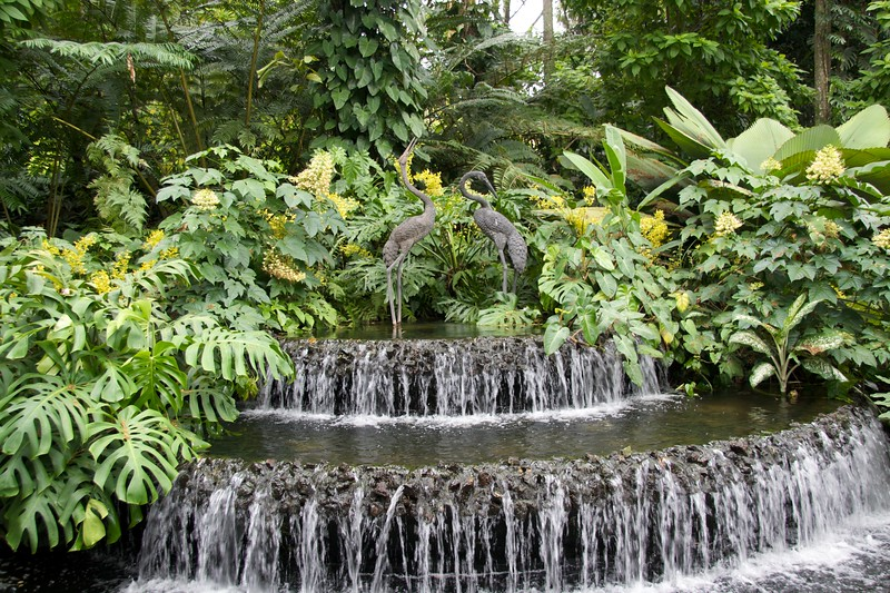 Waterfall • A waterfall within the National Orchid Garden.