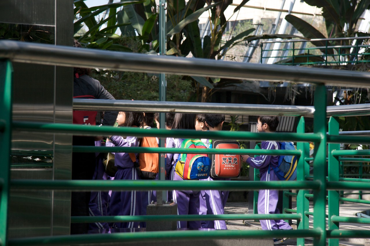 A grand day out • School children at the Botanical Gardens, Taichung.