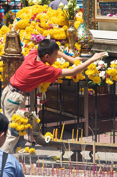 Tending to the flowers • A boy applies flowers at the Erawan Shrine in Bangkok.
