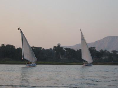 Feluccas on the Nile - Amy Garawitz