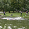 Firemen help Ducks across pond