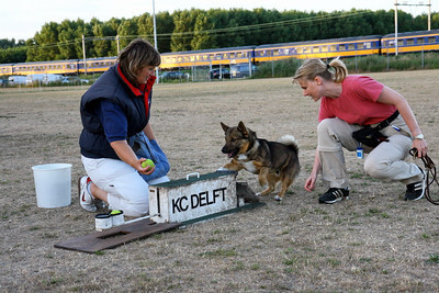 Flyball-probeersel 31 juli 2006