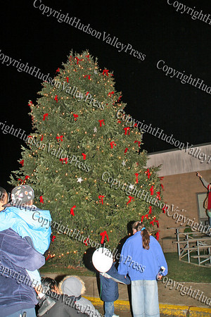 Unity Tree at the Newburgh Recreation Center
