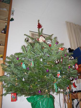 20061231 Christmas tree