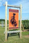 "<a href=""http://www.channingdaughters.com/"">Channing Daughters Winery</a>, 1927 Scuttlehole Road, <a href=""http://en.wikipedia.org/wiki/Bridgehampton,_New_York"">Bridgehampton, NY</a>"