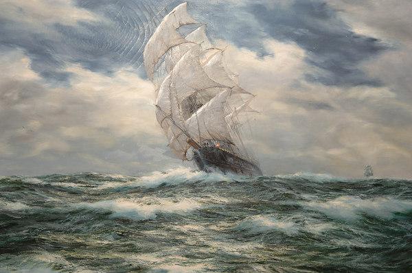 Oceana 019