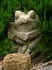Mon 06-06-26 - Neighbor Frog