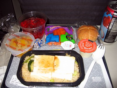 My economy-class vegetarian meal on US Airways -- four blocks of tofu on rice.