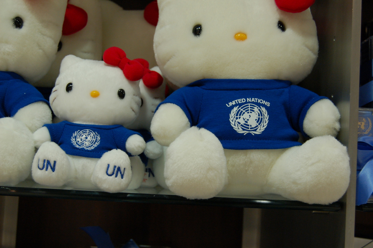 Hello UN Kitty!