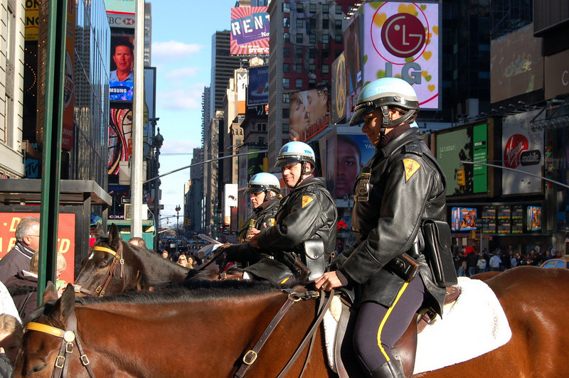 Horses in Time Square