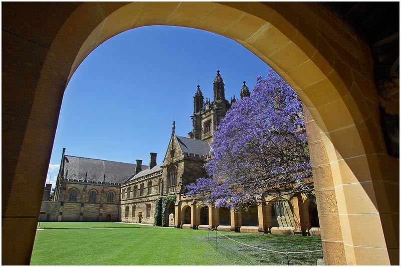 Sydney University, Camperdown, Saturday November 25th 2006. <br /> <br /> The Main Quadrangle of Sydney's oldest university. As part of some forward educational planning for my teenage children I am taking them on tours of the various universities around Sydney. My daughter (13) loved this one, comparing it to the school in Harry Potter, while my son (15) thought it too old and stuffy. <br />  <br /> <br /> EXIF DATA <br /> Canon 1D Mk II. EF 17-35mm f/2.8L@17mm 1/180s f/11 ISO 200.