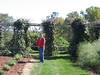 Monticello grounds, the gardens.