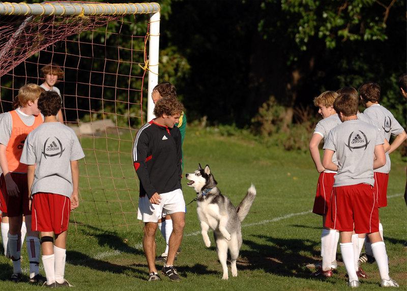 Hinsdale Central teacher and sophomore boys soccer coach Rick Lapinski with his friend, Maverick, at practice Friday.