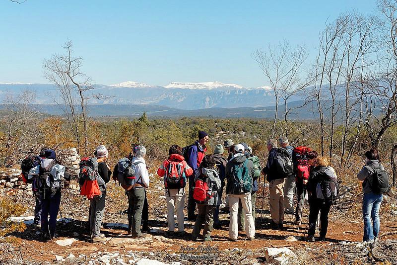 Panorama sur les Alpes de Haute Provence et le plateau de Valensole