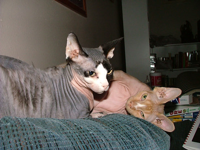 October 2006 - Akila and Jaede