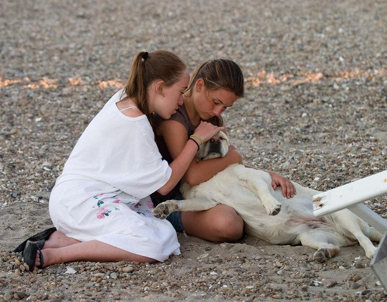 Isabel and friend Megan loving a dog.