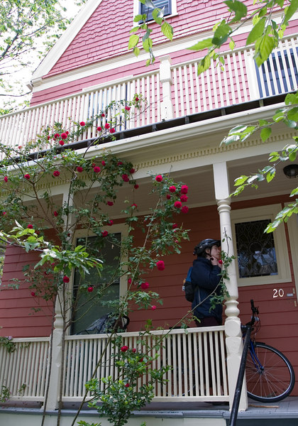 Starting out, a view of our own roses and new house paint job. Chantal is getting her bike ready to go. Bicycling turns out to be the ideal way to get around: no parking hassles, and the distances make walking everywhere impractical.