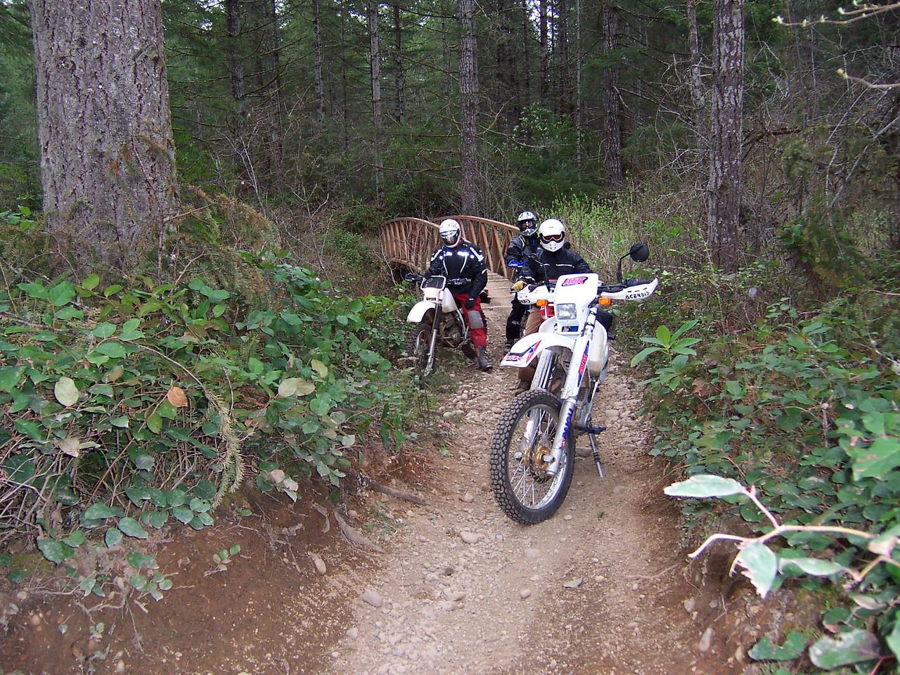 Tahuya River Trail.