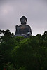 lam tau giant buddha