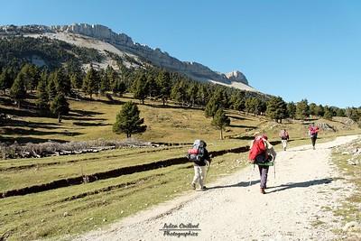 Vallon de Combau - Les falaises de la Montagnette