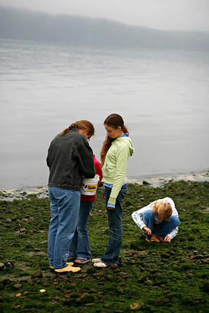 looking at little sea treasures at low tide.