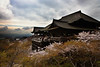 kiyomizudera temple 4, kyoto.jpg