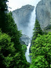 Yosemite Falls, at 2,420 feet of vertical drop, is the sixth or seventh highest waterfall in the world.